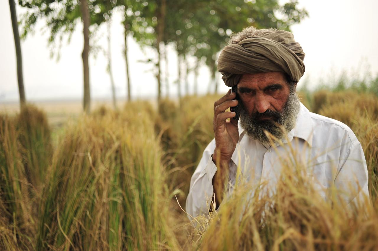 A farmer talking on the phone on the field