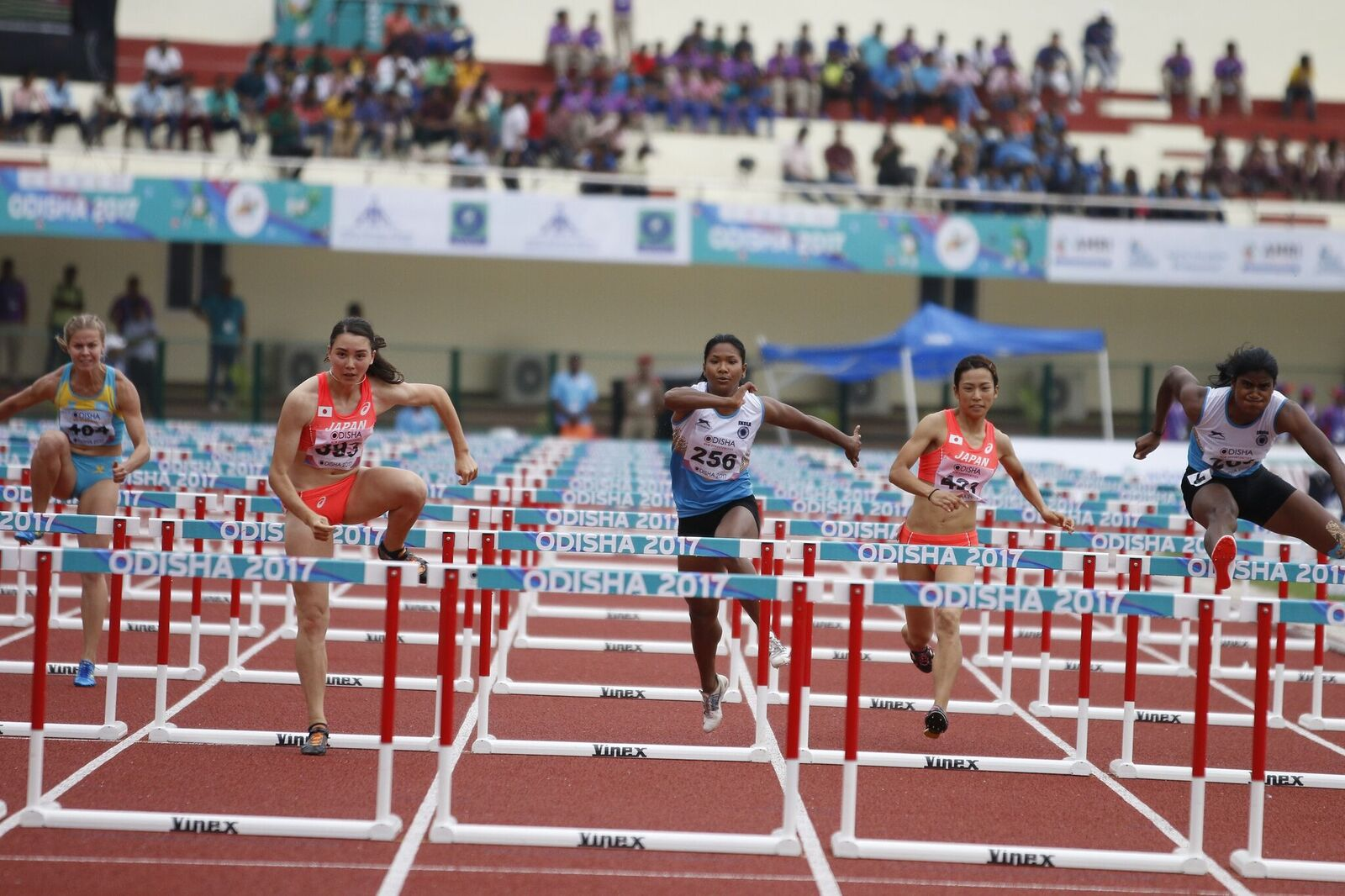 Female athletes competing in a hurdles race