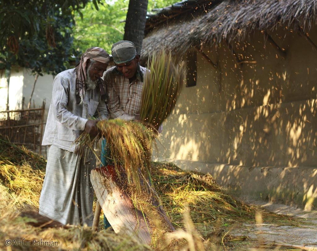 Indian men working together
