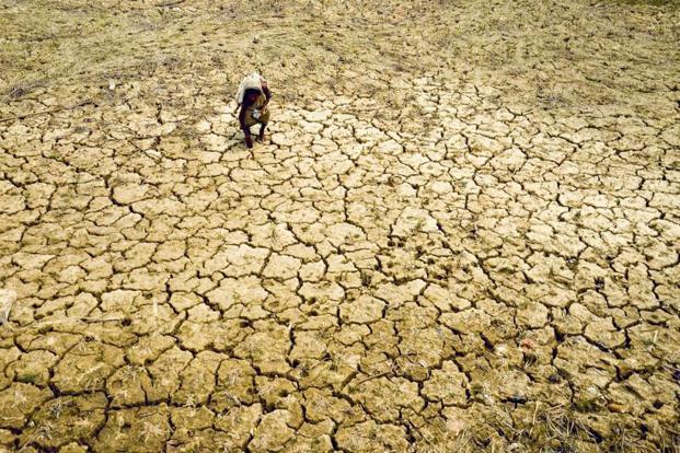 barren land farmer