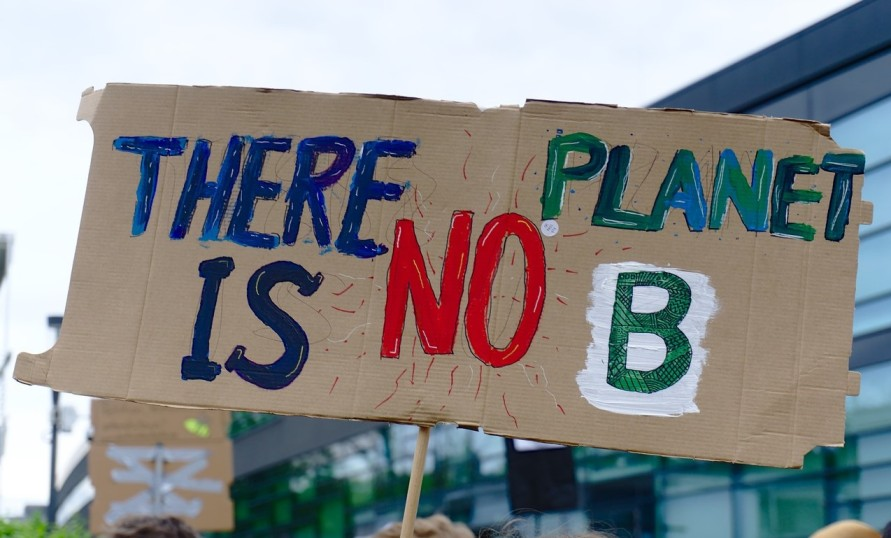 cardboard protest sign saying 'there is no plant B' from Fridays for Future-climate change