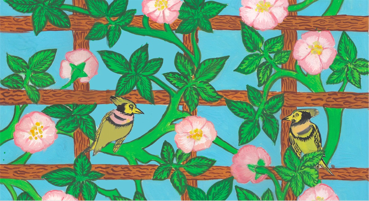 Trellis and birds drawing