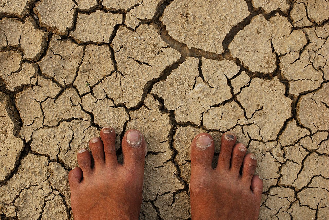 barren land with dry feet
