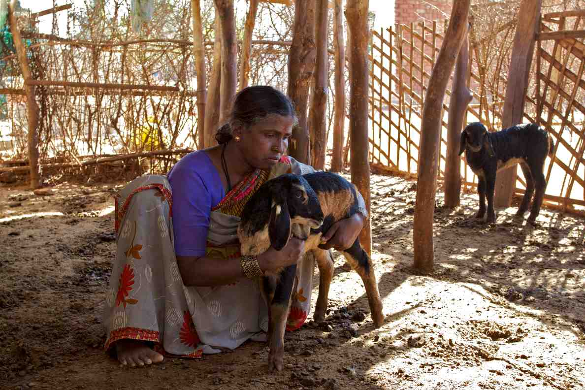 woman in rural india holding her lamb-