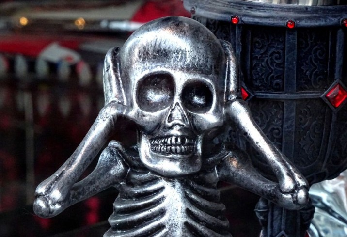 a skeleton closing its ears_webinar_nonprofit humour_public domain pictures
