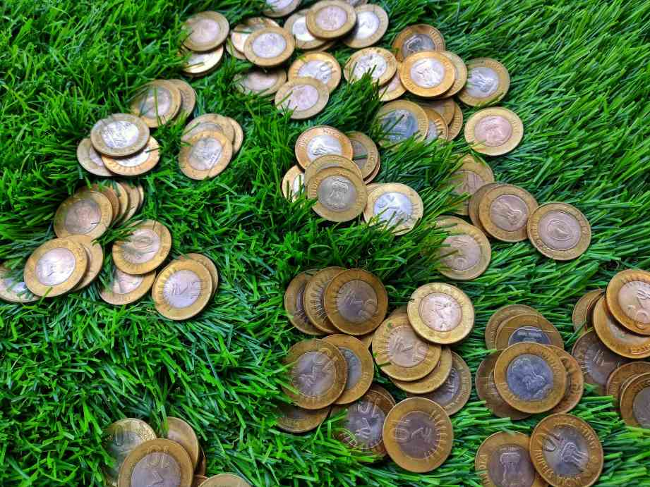 ten rupee coins on grass-climate finance