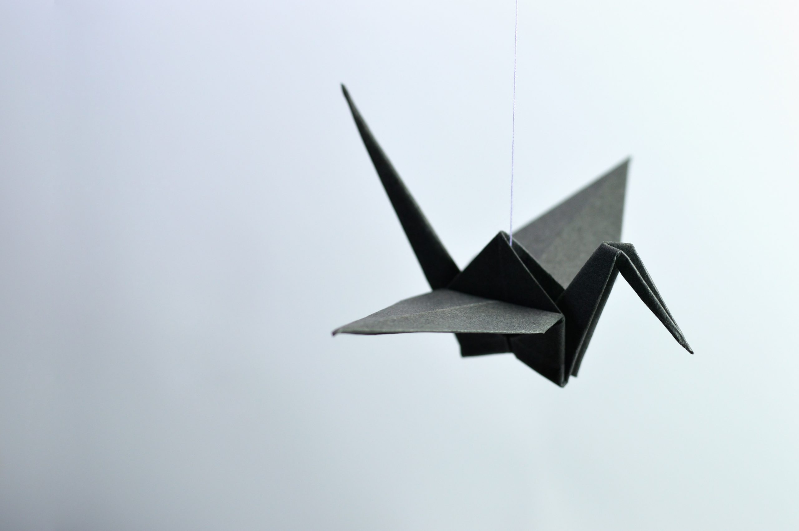origami paper crane-philanthrophy