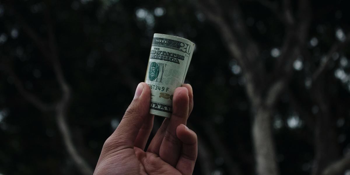 Giving by Indian diaspora US dollar bundle