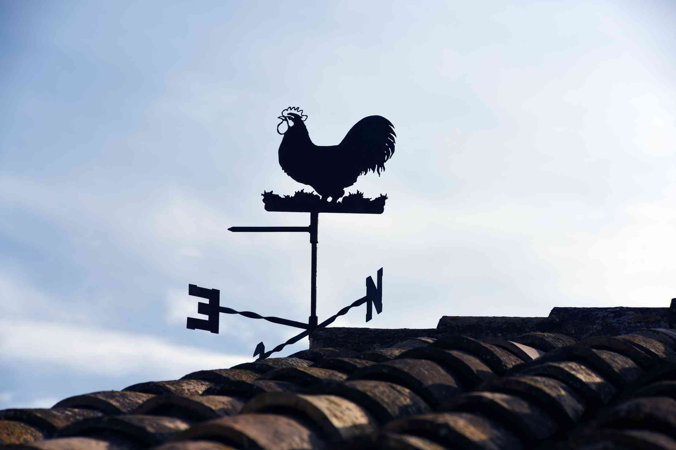 weather vane with rooster-forecast