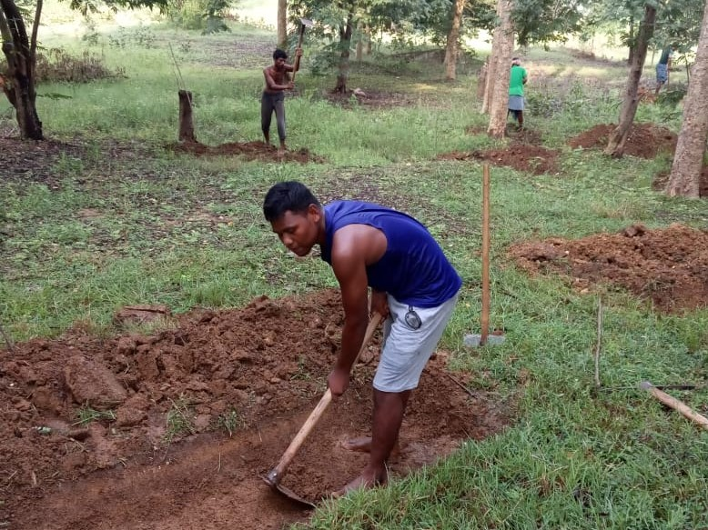 Jadupati working on the field-NREGA