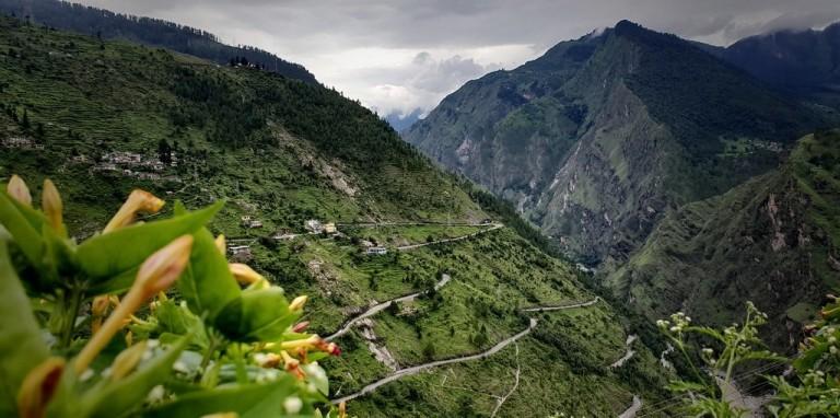 himalaya biodiversity-mountains