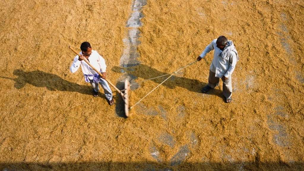two men working together in the field-philanthropy
