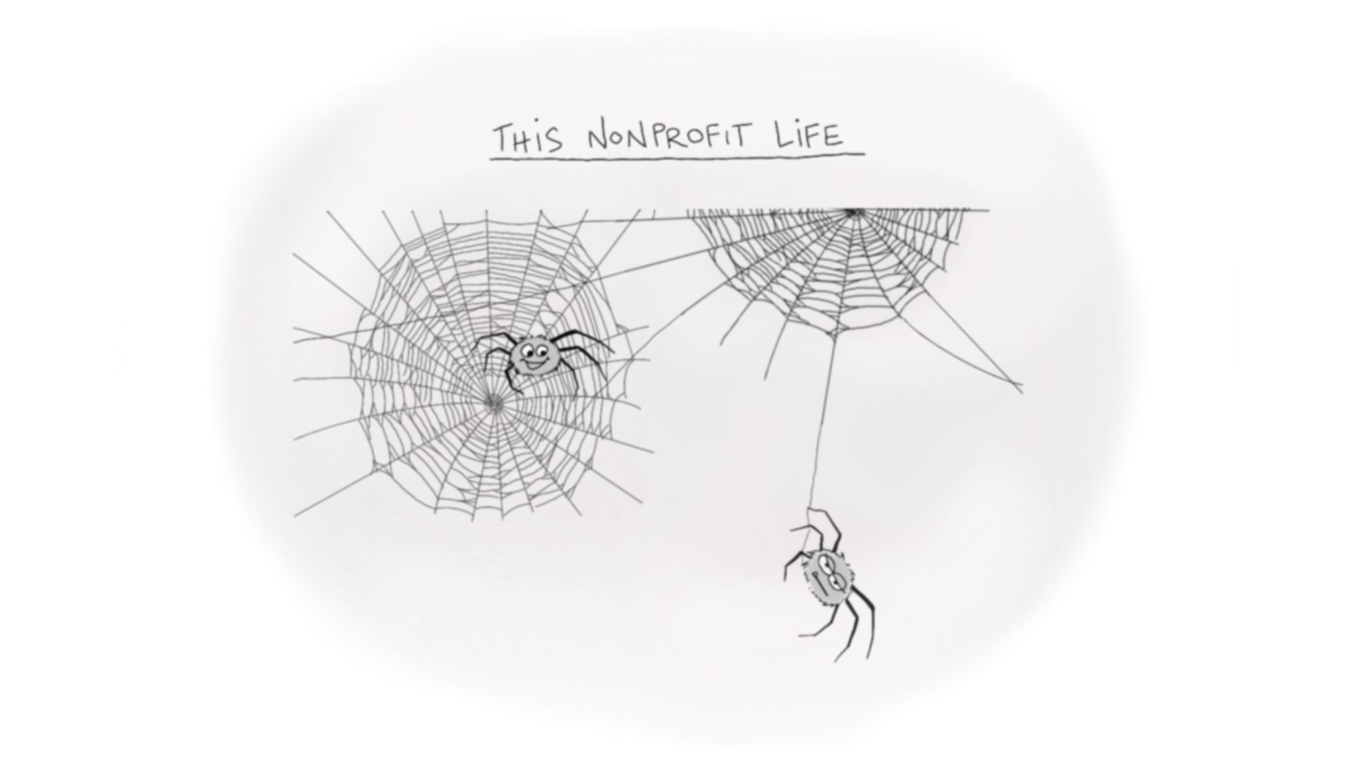 cartoon showing two spiders hanging-nonprofit life