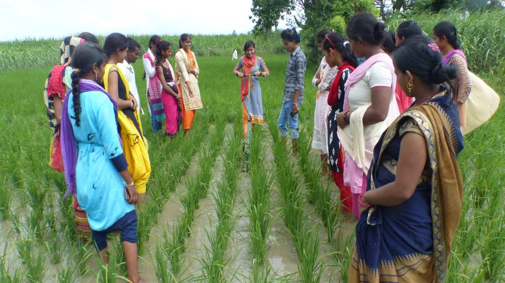 young women being trained in a field-rural youth