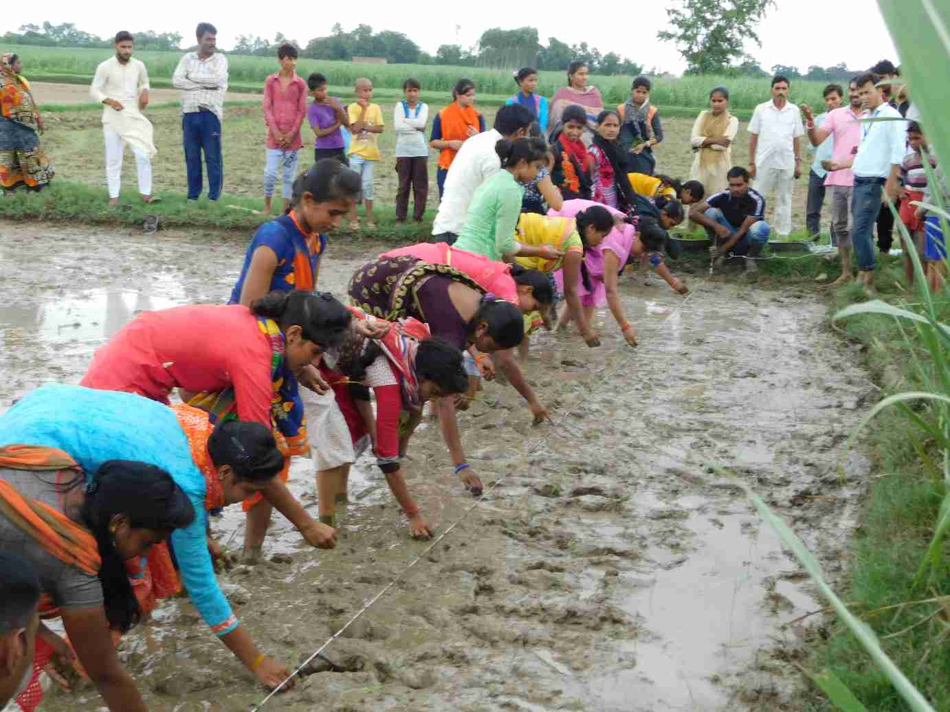 Agricultural-frontline-workers-conduct-an-onsite-demonstration-for-farmers_Hindustan-Unilever-Foundation-marketing principles rural communities