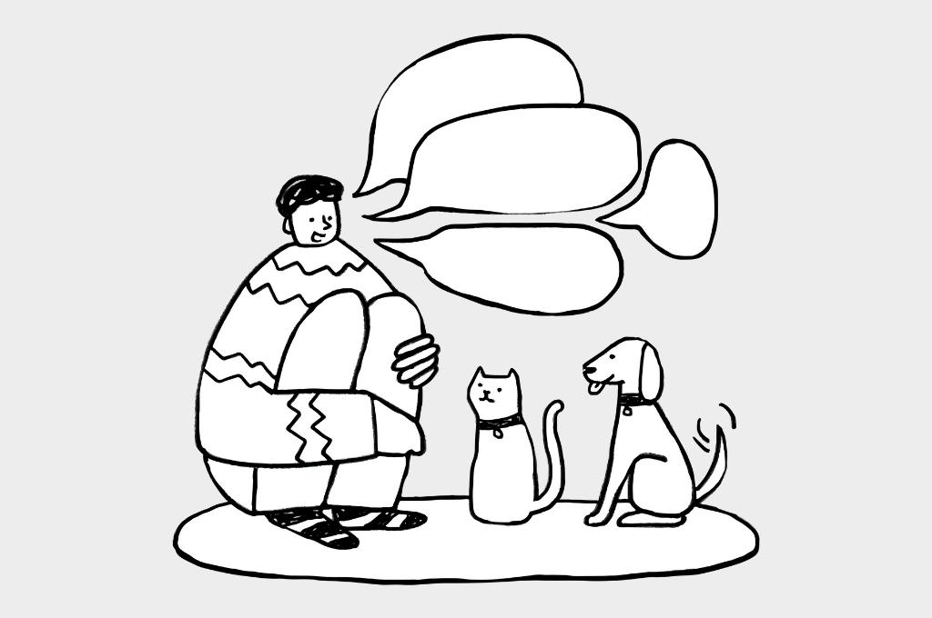 cartoon of a man speaking to a cat and dog-nonprofit humour